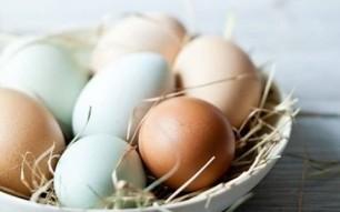 Fresh Hens & Duck Eggs